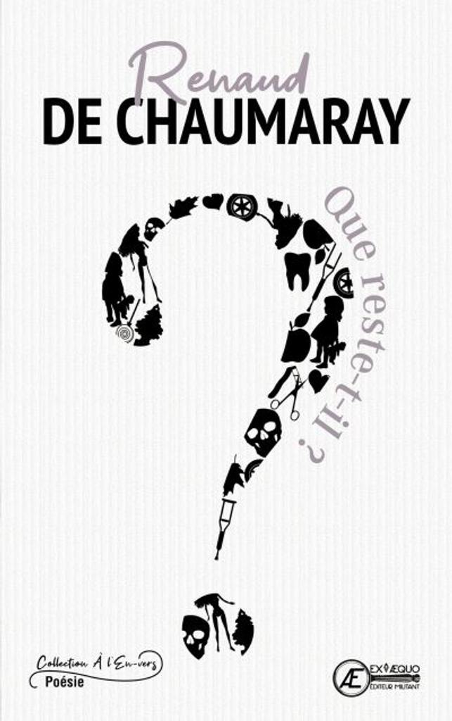 Que reste-t-il ? / Renaud de Chaumaray  